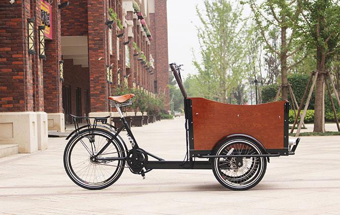 Cargo Bike with Bafang Middle Motor
