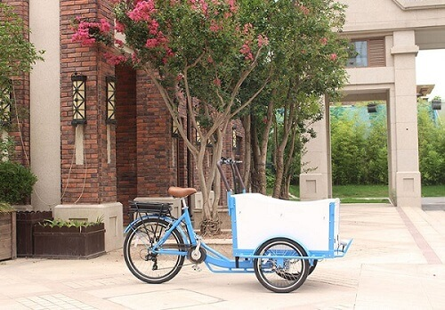 Electric Cargo Bike
