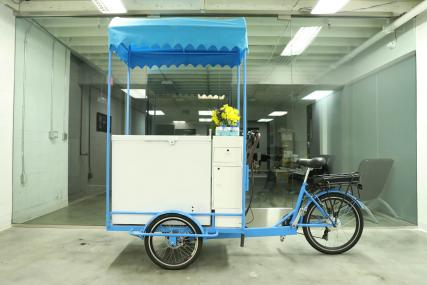 Buy ice cream bicycle business company