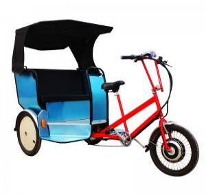 Safe and Convenient Pedicabs